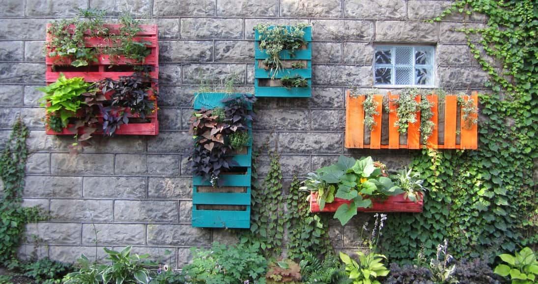 cmo hacer un jardn vertical con palets - Jardin Vertical Con Palets